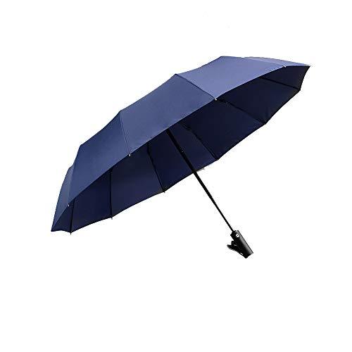 JHHXW Sunny regenschirme 12 Knochen lang Griff Regenschirm automatischer klappschirm Einlage verdickung verstärkung windfestigkeit,Blue