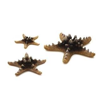 biOrb Starfish Set, Natural 15