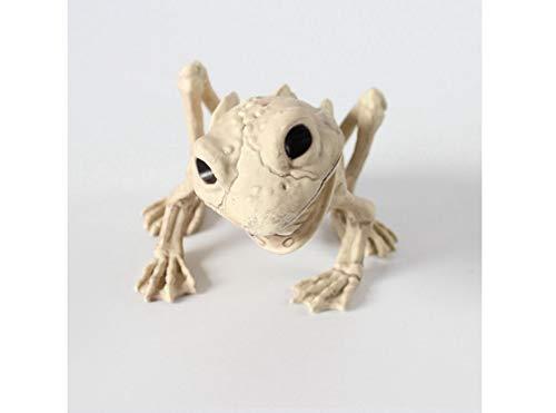 Unbekannt Halloween-Horror-Tier-Dekoration - Halloween-Raum-Dekoration - Verrückter Frosch-Knochen