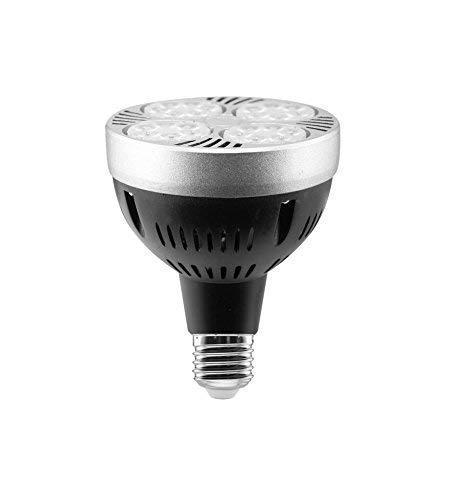 Par30 Spot (Glühbirne Par30 LED 35 W E27 Spot 4000 K neutrales Licht)