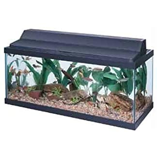 All Glass Aquarium AAG21230 Fluorescent Deluxe Hood, 30-Inch 11