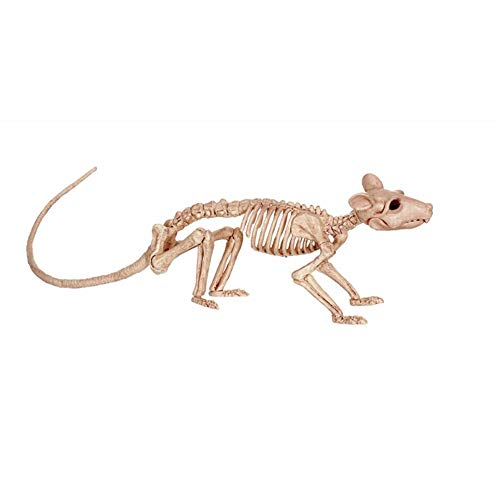 CXZC Halloween Tier Skelett 2 Assorted Ratte Maus Halloween Party Dekoration Prop - Ideal Halloween ()
