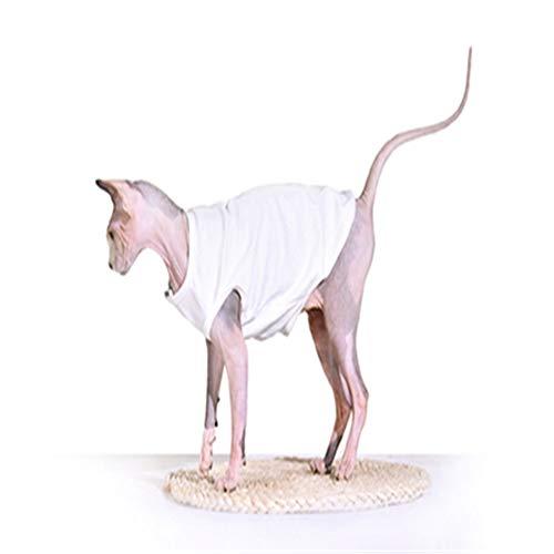 Sphinx Cat Camiseta De AlgodóN Hecha A Mano Chaleco