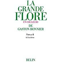 La grande Flore (Volume 3) - Famille 6: Famille 6