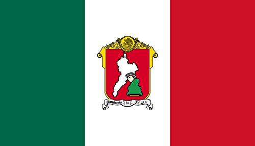 magFlags Bandera Large Toluca, Mexico | Bandera Paisaje | 1.35m² | 90x150cm
