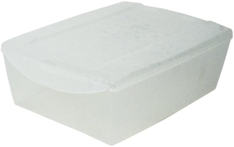 Plasticos Jobgar - Caja De Zapatos 13X36X26 Transparente