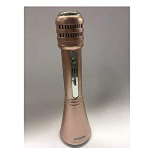 Bontempi - Código 485000-Micrófono inalámbrico con Altavoz