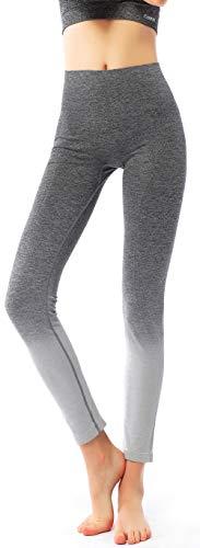 Power Stretch Tights (Freeskin Ombre Yogahose Damen Nahtlose Yoga-Leggings hohe Taille Bauchkontrolle Power Stretch Workout Running Tights, Damen, 2015grey, Large/X-Large)