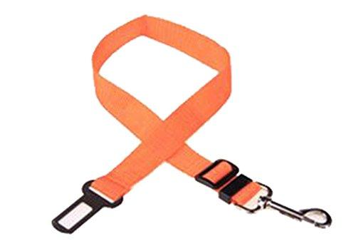 Hosaire - Cintura di sicurezza per cani, regolabile in nylon per trasportare animali in auto, colore nero 1 arancione
