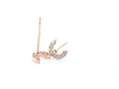 FindOut rosé vergoldet 925 Sterling Silber Mikro Inlay Zirkon 26 Buchstaben A / B / C / D / E / F / G / H / I / J / K / L / M / N / O / P / Q / R / S / T / U / V / W / X / Y / Z. Ohrringe (f1278) (C)