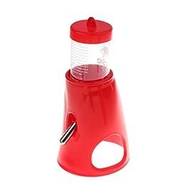 FLAMEER Alimentatore di Dispenser per Bottiglia d'Acqua con Coniglio E Cavia