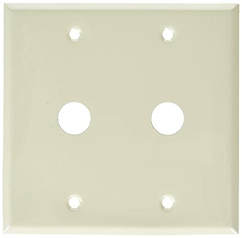 Morris 83473 Painted Steel Wall Plate for Cable, 2 Gang,