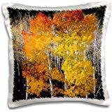 Scott T. Smith - Trees - Utah, USA, Aspen trees in autumn. Fish Lake Basin. Fishlake NF. - 16x16 inch Pillow Case