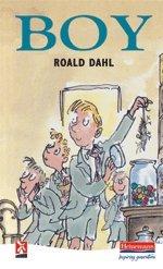 Boy: Tales of Childhood (New Windmills KS3)