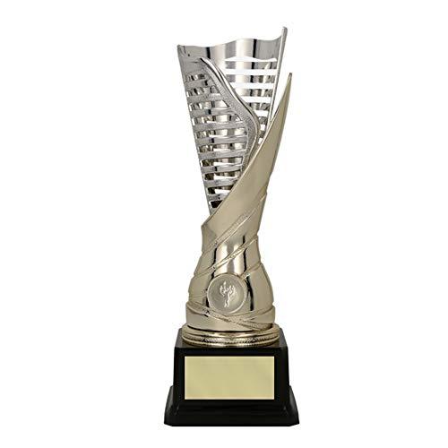 RaRu Extravaganter Kickboxen-Pokal (Flamme silbergold) mit Ihrer Wunschgravur