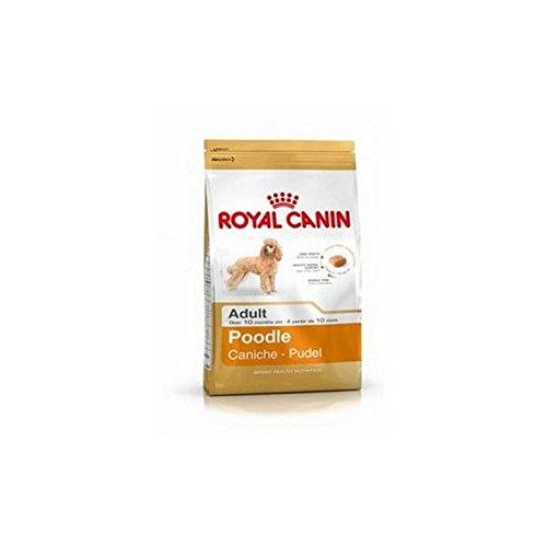 ROYAL CANIN Adult Complete Dog Food for Poodle (1.5kg) (Pack of 2)