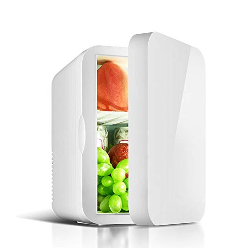 Auto Mini Tragbare Elektrische Kühlbox Car Home Mini Kühlschrank Einzeltür Leichte Isolierte Kühlbox Container Camping coolbox 6L 220/12 V (Kühlschrank Mini Camping)