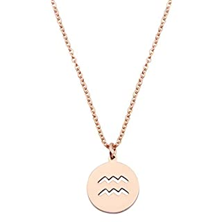 Zodiac Pendant Necklace Rose Gold Disc Horoscope Necklace Birthday Gift (Aquarius RG)