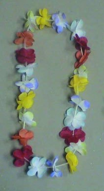 RG Costumes 24-Flower Lei Hawaiian Necklace Party Accessory by RG Costumes