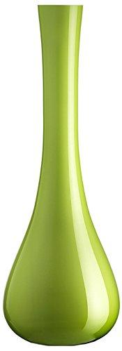 LEONARDO Sacchetta Florero en forma de botella Verde jarron - jarrones (Florero...