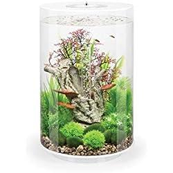 Oase Biorb Tube 30 LED pour Aquarium Blanc 6,131 kg