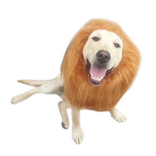 Kakiyi Pet Cosplay Kleidung Karikatur-Hut Löwe Mähne Wig Cap Lustige nettes weiches Haar Kapuze (Dschungel Tag Kostüm Ideen)