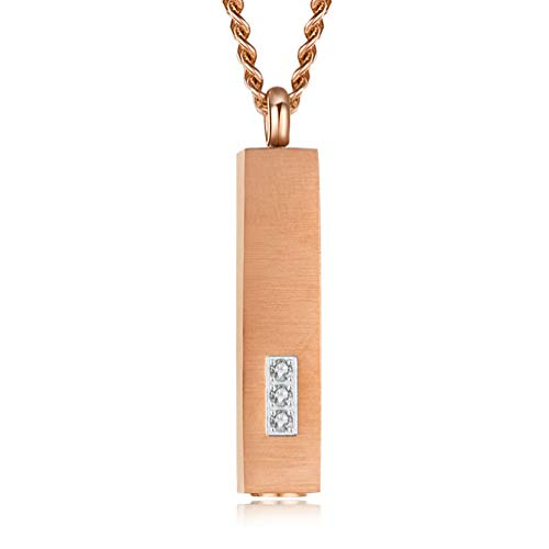 QYZLT Einfache quadratische Parfümflasche Sarg Halskette Edelstahl Haustier Urne Box Kette Tier Sarg Anhänger Silber,Rosegold (Tier-sarg)