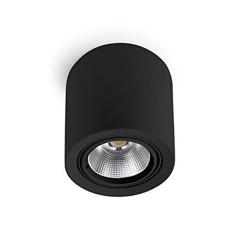 LEDs-C4 90-2993-60 OE