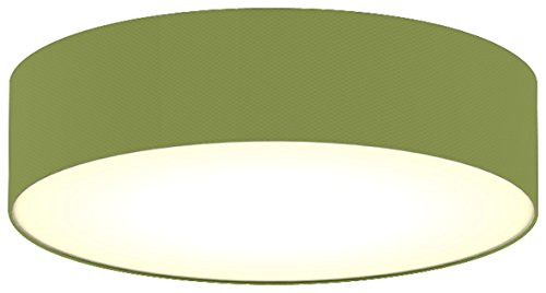 ranex-ceiling-dream-collection-modern-ceiling-light-frosted-cover-green-40-cm-e14