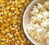 Santhigram Pop Corn Kernels 1 kg (Free Shipping)