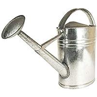 Zinkgießkanne 5 oder 10 L, Gießkanne feuerverzinkt, Metallgießkanne (Zinkgießkanne, 10 L)