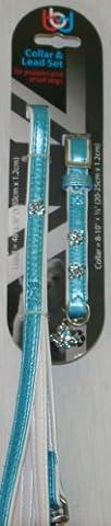 BBD Diamante Set pour chiot