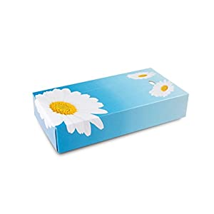 Funny Kosmetikboxen 2 lagig 100 Tücher per Box hochweiß, 10er Pack (10 x 100 Stck)