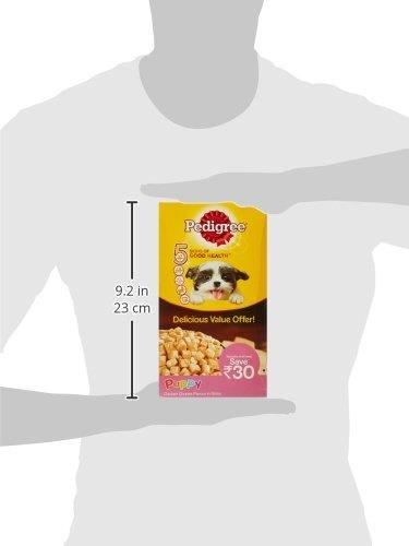 Pedigree Puppy Wet Dog Food, Chicken Chunks in Gravy, 80g (Pack of 15)