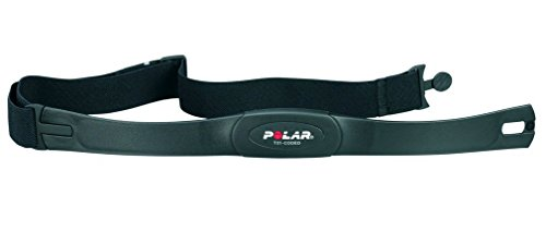 Polar T31 Coded – Weight Lifting Belts