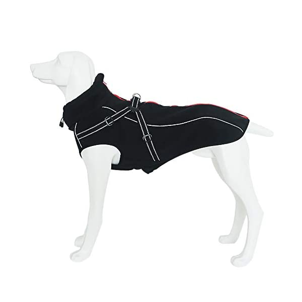 JunBo Dog Jacket with Harness Warm Coats and Jackets for Medium and Large Dogs 1