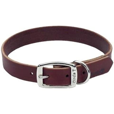 Leather Latigo Dog Collar - 18 in. with a Width of 3/4 in. by Coastal Pet