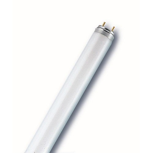 3350LM Luxna Lamps EDF36/830 fluorescent lamp G13 Ø 26 mm