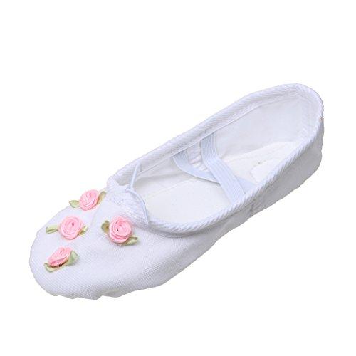 Gazechimp Chaussons de Danse Classique Toile Ballerine Demi-pointes Yoga Semelle Cuir pour Enfants Filles - Blanc, 29