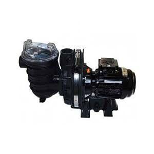 Pompe STA RITE pour eau salée 5P2R 1 CV (mono)