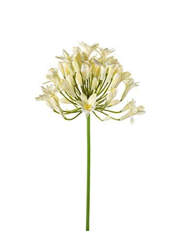 artplants Set 24 x Künstlicher Agapanthus PHILINA, Creme, 75 cm, Ø 14 cm – 24 Stück Kunst Schmucklilie/Kunstblumen weiß