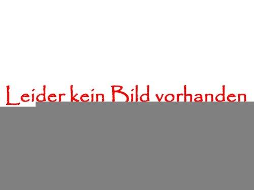 Jules Kostüm (Mittelalter Langarmbluse