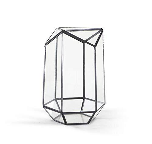 Tischplatte Unregelmäßiges Glas Geometrische Sukkulente Terrarium Box Pflanzgefäß Blumentopf Reptil Mit Tür Luftpflanzen Pflanzgefäß Fensterbrett Moosfarn Blumentopf Kleine Haustiere Box Container