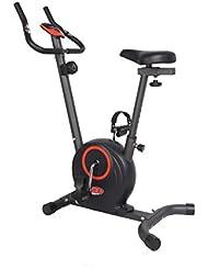 David Douillet VM220 Vélo d'appartement magnétique Gris
