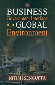 Business Government Interface in Global Environment -