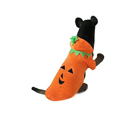 Halloween Die Neue haustierkleidung Großen hund kürbis pet kleidung , 5xl