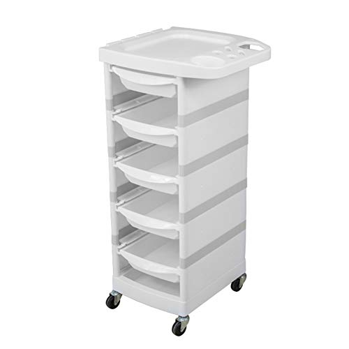 HACART 6-Tier Salon Friseurwagen Lagerung Wagen mit Rollen Multifunktional Schönheit Make-up Wagen Färbung Spa Salon 1 Oben Tablett + 5 Pull-Out Schubladen, 002 - Salon Rollen