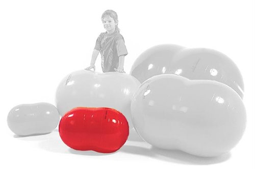 Gymnic Physio Roll – Exercise Balls & Accessories