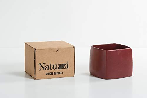 Jarrón Rojo Made in Italy 100% Teracota para Suculentas y Hierbas Aromáticas | Jarrón Candelabro Cuadrado | Portalápices de Diseño de Escritorio | Hermosa Decoración Casa Cocina Mesa Escritorio