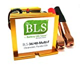 36& 48Volt Industrie Batterie Life Saver